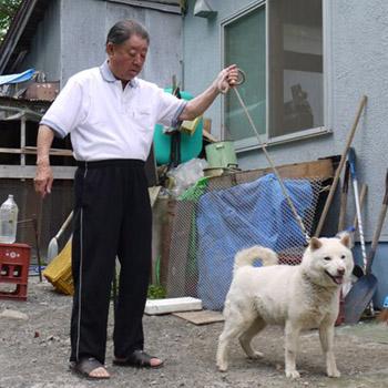 雄勝・小樽光洋荘の母犬の百四十五優女・小樽合羽井