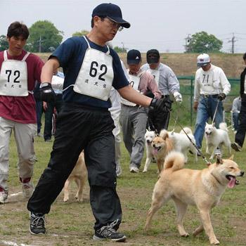 平成20年春季本部展若犬牝組優勝時の瑞穂・広尾北進荘