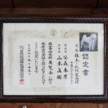 雄冬・札幌定山荘の本部参考犬認定証