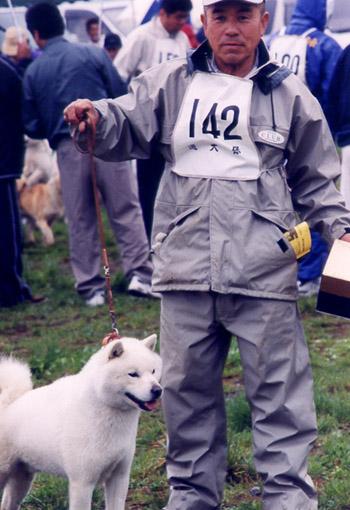 雄冬・札幌定山荘の未成犬時代の画像
