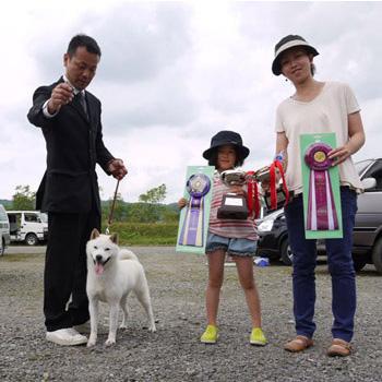 母犬えぞ翠の同胎メスにあたる、えぞ姫は支部展優勝多数のほかJKCクラブ展でベスト・イン・パピー獲得の優秀犬です。恵庭支部・三浦賢氏所有
