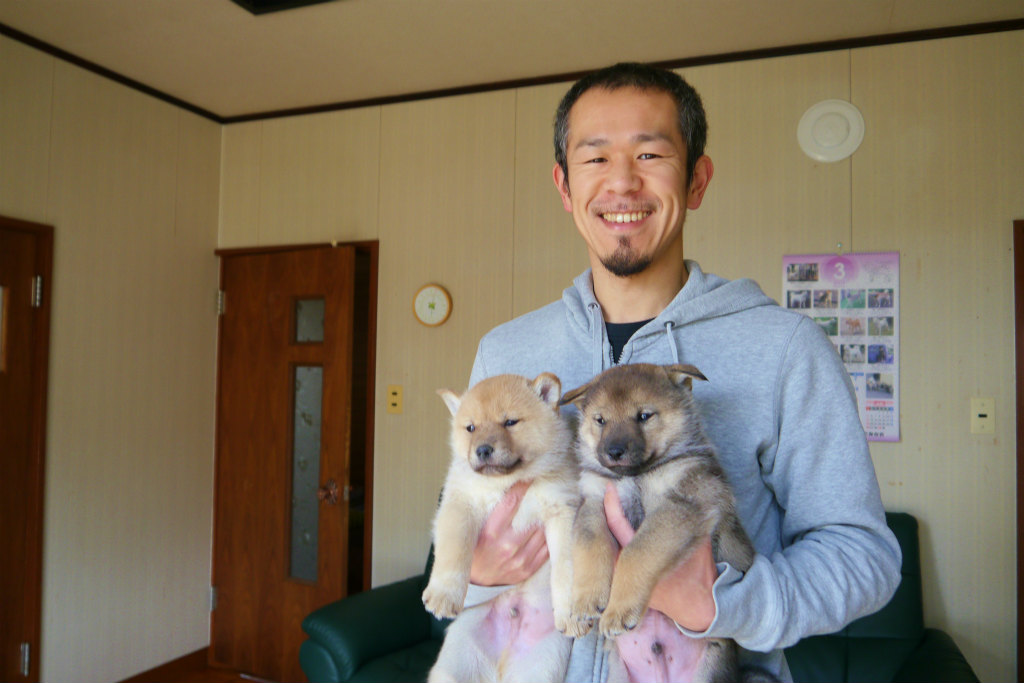 繁殖者の南氏と子犬達。繁殖者の南氏は北海道犬保存会若手では筆頭のハンドラーです。(3月25日撮影 生後37日目)